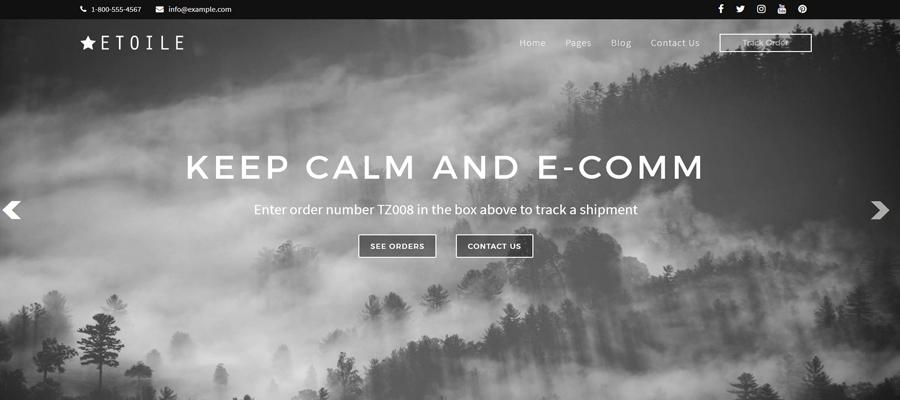 WordPress Deal Keep Calm and E-Comm Theme Screen Cap